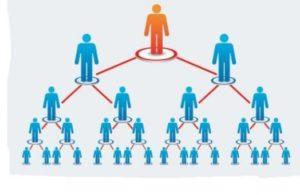 развивай сеть в армель